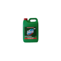 Domestos mountain fresh 5L